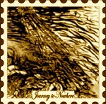 Journey-To-Nowhere postage stamp #11