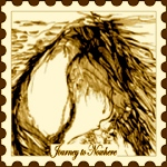 Journey-To-Nowhere postage stamp #21