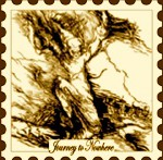 Journey-To-Nowhere postage stamp #8
